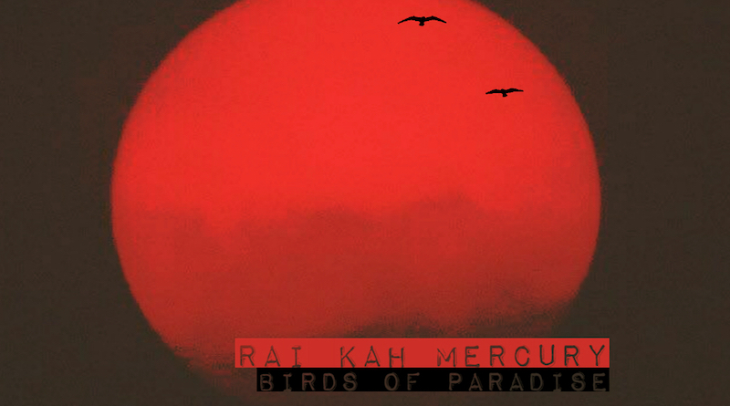 Rai Kah Mercury - Birds of Paradise